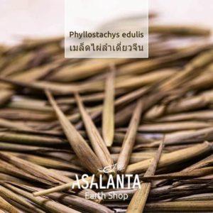 Bamboo seeds, Phyllostachys Edulis 1 pack 20seeds – เมล็ดไผ่ ลำเดียว จีน 1 ชุด 20 เมล็ด
